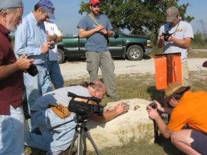 Photographing a hognose snake