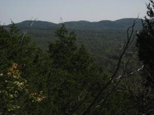 View from Coy Bald