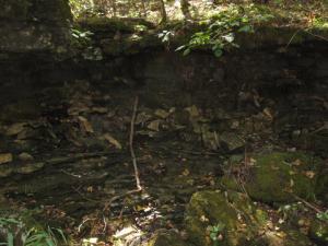 Dry, rocky streambed