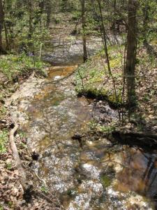 Coonville Creek