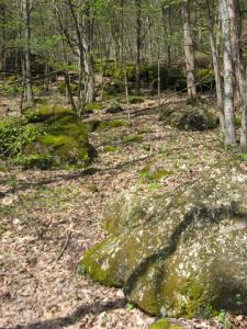 Rocky hillside near Coonville Creek