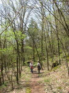 The group hikes along Coonville Creek trail