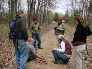 The group gathers to photograph a ground skink