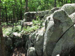 Rocky woodland